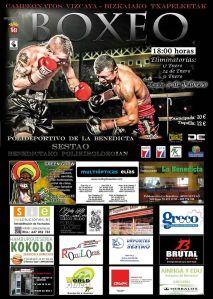 Web_Campeonatos Vizcaya 2015